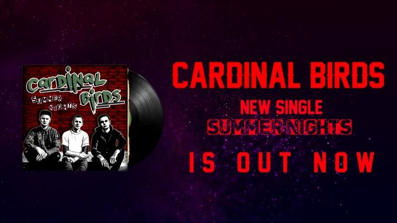 Cardinal Birds - Summer Nights