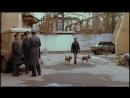 [Скрытый смысл песен и фильмов] Фильм Жмурки Скрытый смысл картина Алексей Балабанова анализ фильма 2005 и психологический разбо