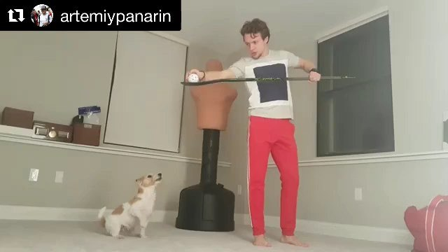 """NHL on Instagram: """"TENACIOUS forecheck by @artemiypanarin's pup. 🐶"""""""