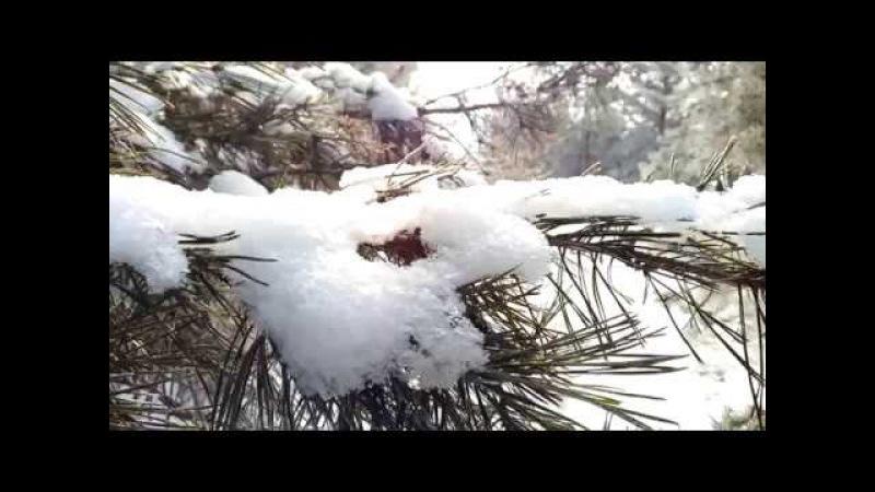 Закрытие зимнего веслосезона В поисках снега 2017-2018