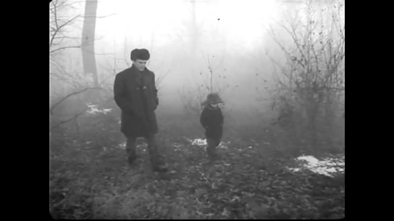 «Серёжа» (1960) - драма, реж. Георгий Данелия, Игорь Таланкин