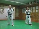 Hapkido kicks
