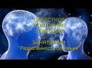Целостное Состояние Сознания Занятие №1 Разделённость сознания