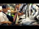 Seafood Market at Sihanoukville in Cambodia   Phsar Leu Market Krong Preah Sihanouk