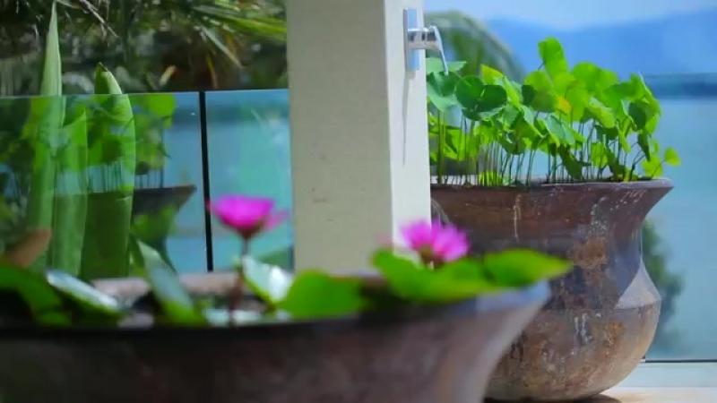 VILLA PADMA - Phuket Luxury Villa w_ 4 Bedrooms