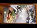 Cảnh trộm chó táo tợn giữa phố Hà Nội khiến dân mạng Việt dậy sóng