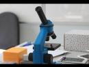 Модуль: Зелёные биотехнологии . Тема урока: определение заражённости семян .