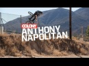Anthony Napolitan - Colony BMX