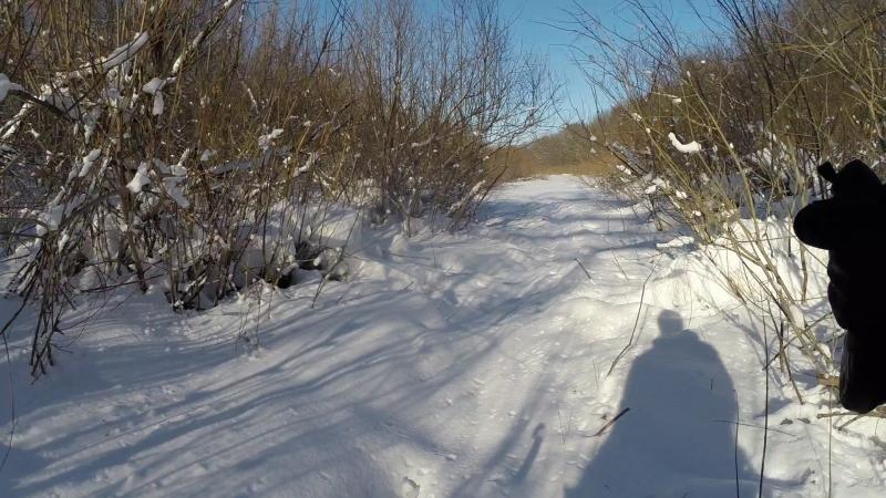 Самара место в котором я живу - Пропиливаем завалы в протоках Зимой для каяка 3