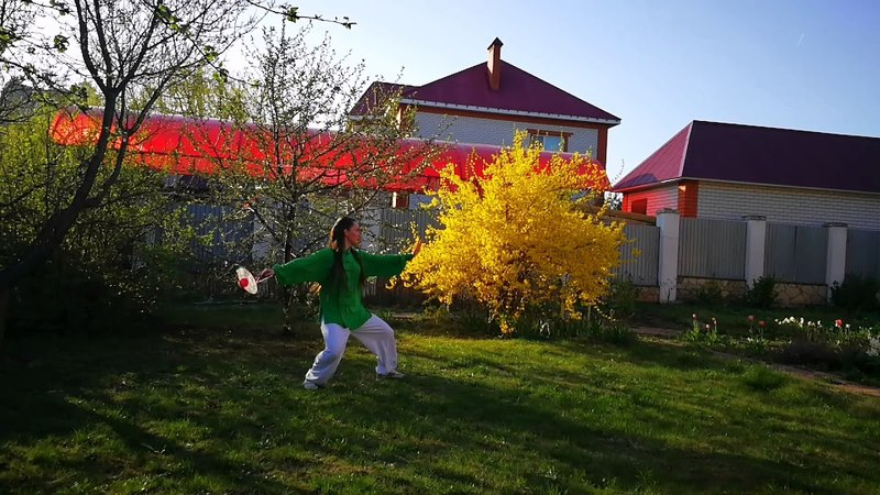 Roliball online. Ролибол в России. Тайцзи с ракеткой. Taiji forms for Duan exam. 太极柔力球。