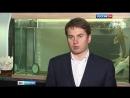 Вести Москва Вести Москва Эфир от 29 04 2016 11 35
