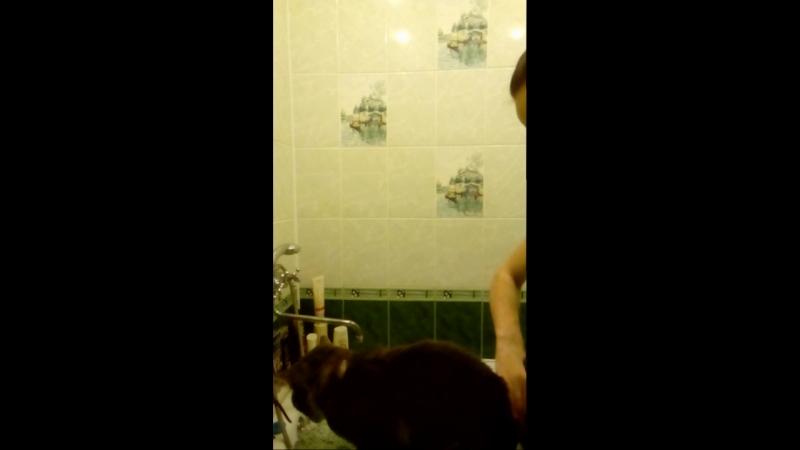 сушка Лёвы после мытья