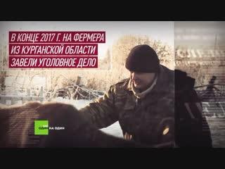 Телёнок, который помог людям: как вопрос RT на пресс-конференции Путина дал старт проекту Не один на один