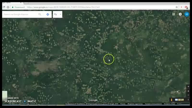 Куда уходит лес или вся правда о сибирской тайге.
