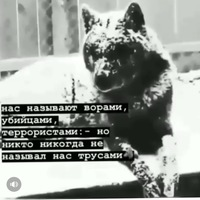 Герейханов Руслан