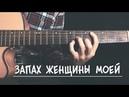 Запах женщины моей на гитаре БЕЗ БАРРЭ