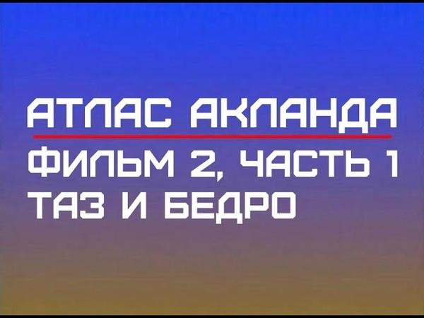 Фильм 2 Часть 1 Таз и бедро Атлас Акланда