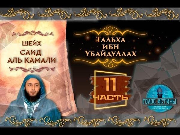 Сподвижник Тальха ибн УбайдуЛлах | Саид аль - Камали | Истории праведных предшественников