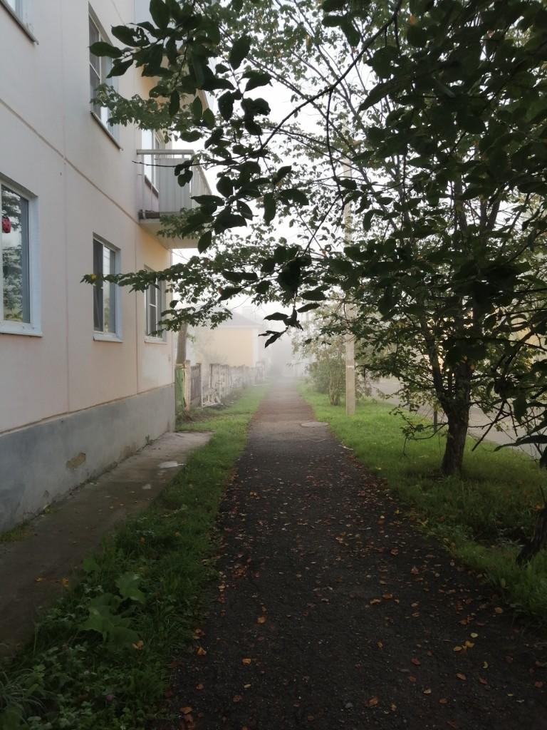 Уральские ебеня - Фото