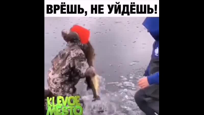 шустрая рыбачка
