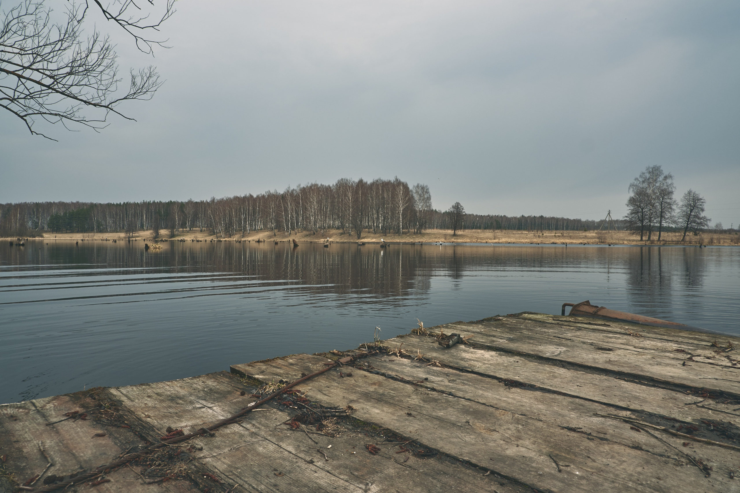 Владимирская область, посёлок имени Горького - Фото