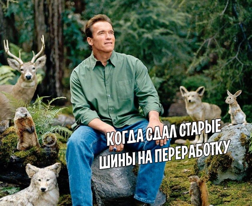 В Одинцовском округе можно сдать старые покрышки
