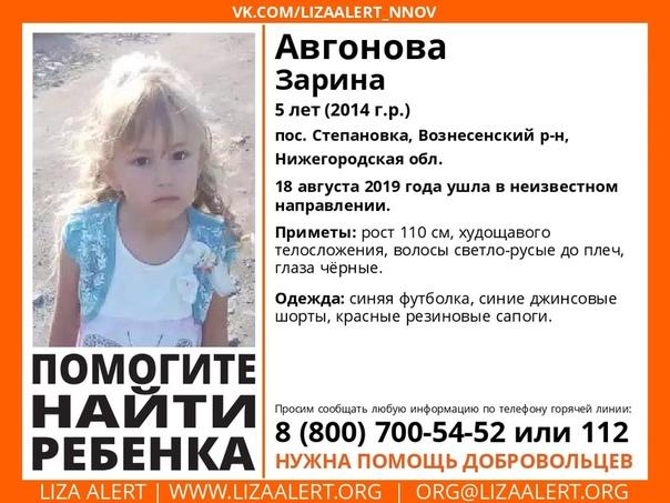 Пятилетняя Зарина Авгонова пропала в поселке Степановка Вознесенского района Нижегородской области 18 августа утром родственники вместе с Зариной пошли за грибами. Но к обеду девочка устала. И