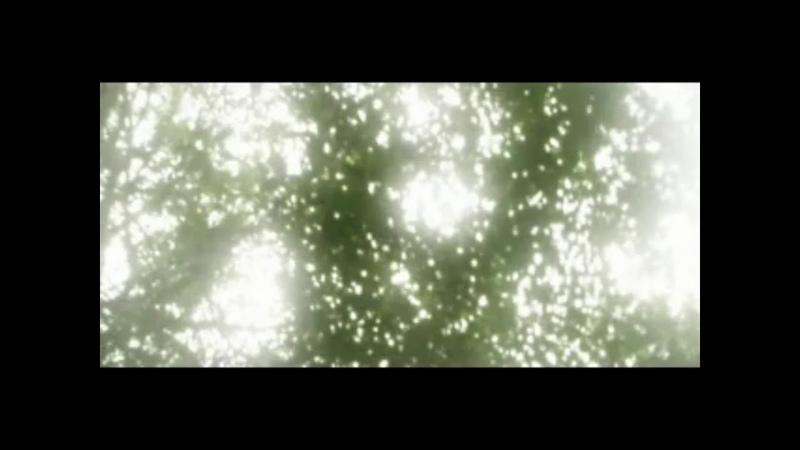 Jorge Estrada Rayos de Sol (Sunbeams) feat José Oliva from Invocations album