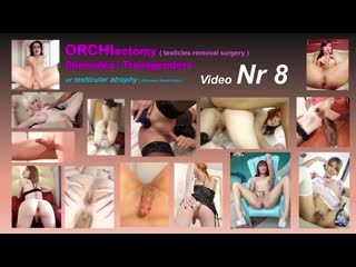 08 ORCHIECTOMY SHEMALES (CASTRATED NO BALLS) GIA CRUZ