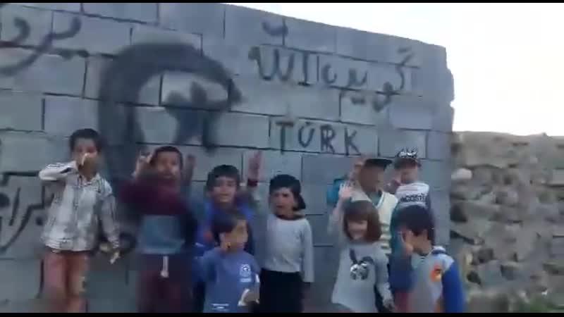 Дети иранских азери снялись рядом с эмблемой турецких пантюркистов бозкуртов