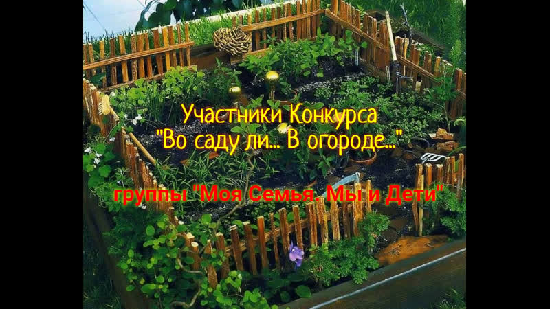 Конкурс Во саду ли В огороде группа Моя Семья Мы и Дети