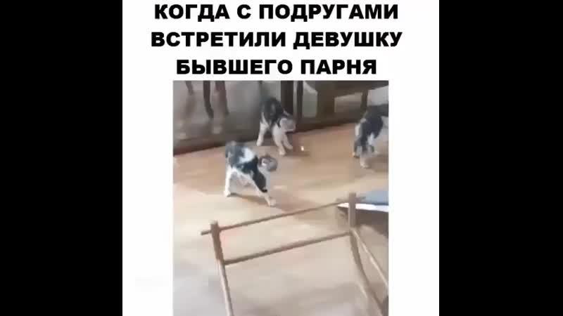 Video ulet InstaUtility 00 B0Ct5b2AMnn 11