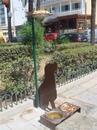 Так на острове Родос(Греция) решают проблему с бездомными животными.