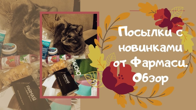 обзор посылок фармаси Беларусь