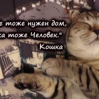Фото Ирвы Ви ВКонтакте