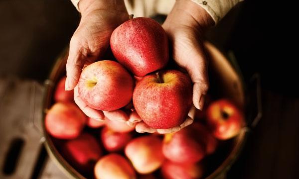 Почему полезно есть яблоки каждый день?, изображение №1
