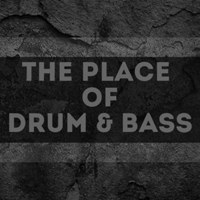 Логотип The Place Of Drum & Bass