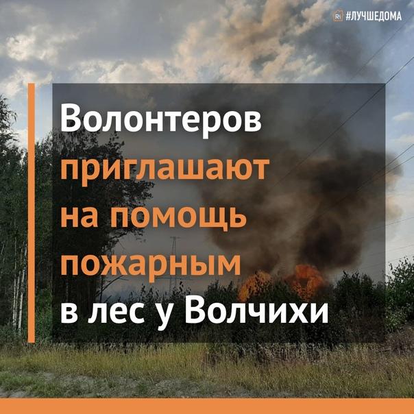Срочно нужны добровольцы для тушения пожара на Волчихе. Хотите помочь? Приезжайте прямо сейчас на ГЛК «Волчиха», штаб у кафе.
