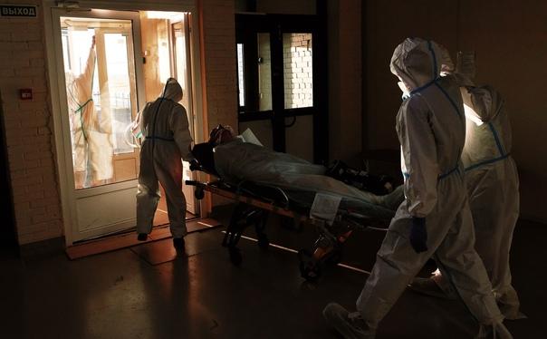 В Петербурге зафиксировали новый штамм коронавирус...