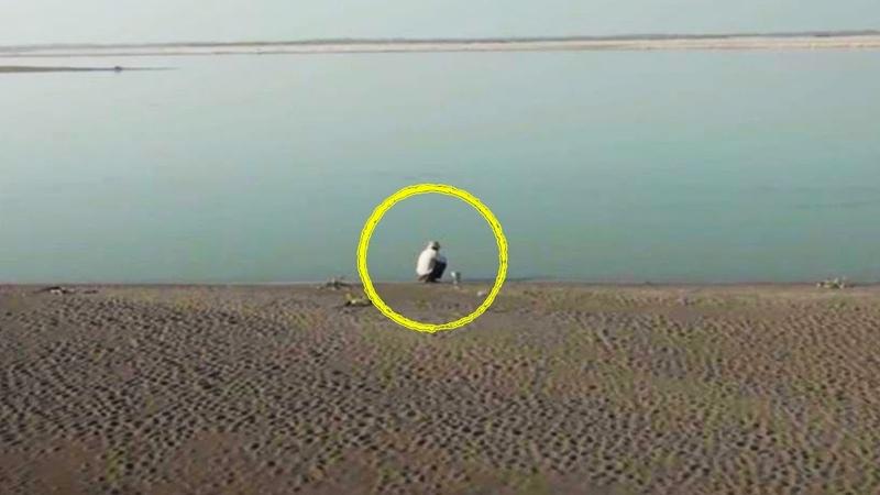 Парень увидел берег покрытый мертвыми змеями тогда он решает сделать то что многие считали безумие