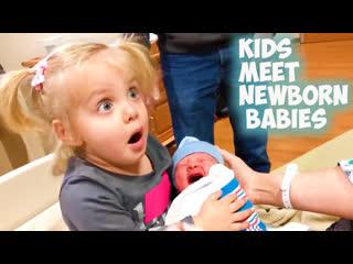 Дети встречают новорождённых малышей первый раз Очень Мило