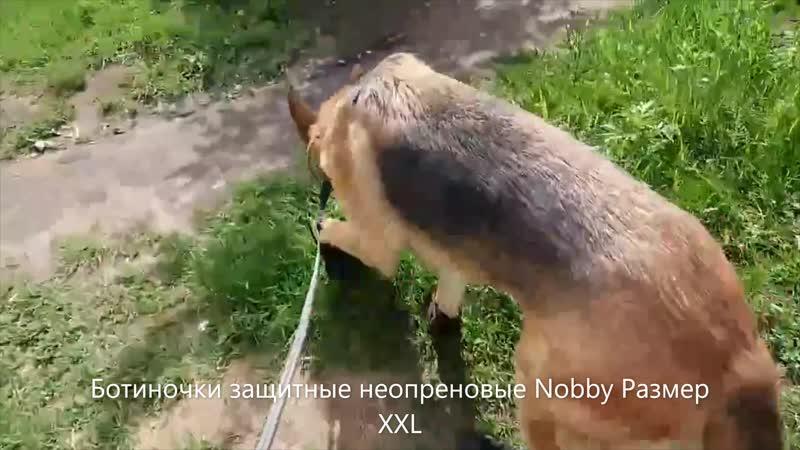 Ботиночки защитные неопреновые Nobby Размер XXL
