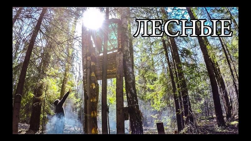 ДОМ НА ДЕРЕВЕ ПОСЛЕ СУРОВОЙ ЗИМЫ Bushcraft Tree Shelter