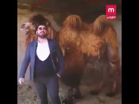Mehdi Sabili Iranian expert on Islam urges Iranians to drink camel urine to treat coronavirus