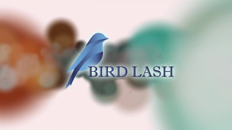 Logo Bird Lash
