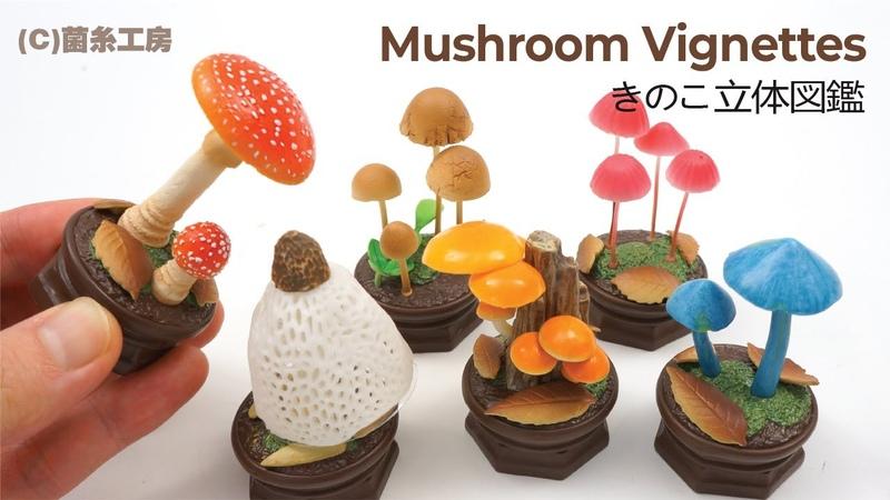 Mushroom 3D Encyclopedia Gashapon Capsule Toy Beautiful Vignettes