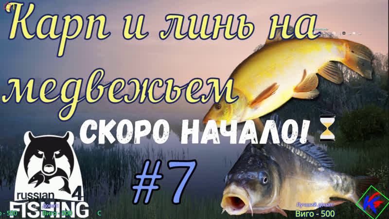 РР4 Русская рыбалка 4 7 Карп и линь на медвежьем EljoGWNcf9g
