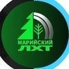 Марийский лесохозяйственный техникум (МЛТ)