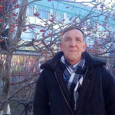 Viktor, 70, Bureya
