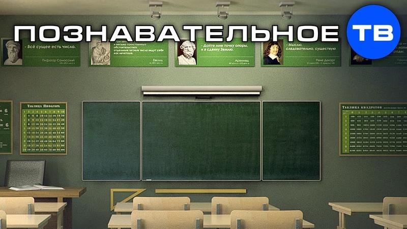 Как вы отдаёте власть и своё законное право чиновникам (Познавательное ТВ, Артём Войтенков)